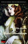ebook: Wenn es dunkel wird im Märchenwald ...: Aladins Wunderlampe