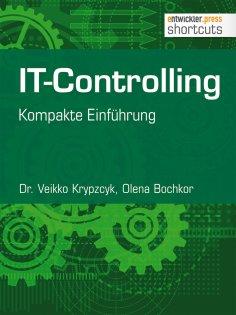 eBook: IT-Controlling