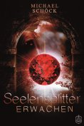 eBook: Seelensplitter