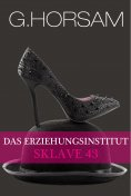eBook: Das Erziehungsinstitut - Sklave 43