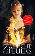 eBook: Im Zwielicht des Feuers