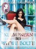 eBook: Klempnern bei Witwe Bolte