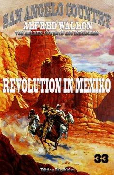 ebook: Revolution in Mexiko