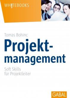 ebook: Projektmanagement