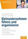 eBook: Kleinunternehmen führen und organisieren