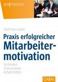 eBook: Praxis erfolgreicher Mitarbeitermotivation