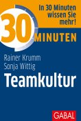 eBook: 30 Minuten Teamkultur