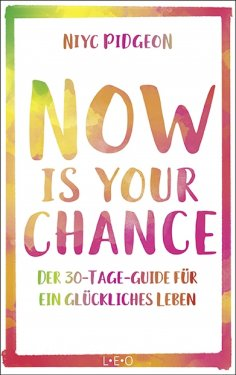 ebook: Now Is Your Chance