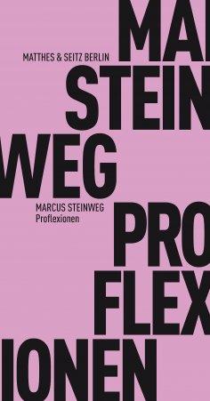 eBook: Proflexionen