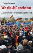 eBook: Wo die AfD recht hat und warum sie trotzdem Brandstifter sind