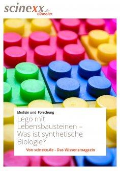 ebook: Lego mit Lebensbausteinen