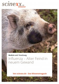 ebook: Influenza