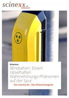 ebook: Blindsehen
