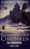 eBook: Die Elementarsturm-Chroniken: Das Druidentor. Episode 1