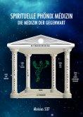 ebook: Spirituelle Phönix Medizin