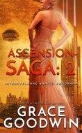 eBook: Ascension-Saga: 2