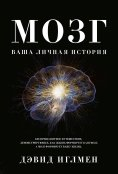 eBook: THE BRAIN The Story of You