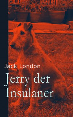 eBook: Jerry der Insulaner