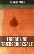 ebook: Triebe und Triebschicksale
