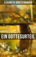 eBook: Ein Gottesurteil