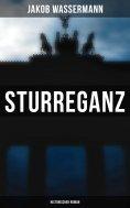 eBook: Sturreganz: Historischer Roman