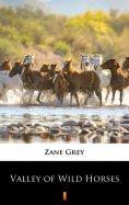 eBook: Valley of Wild Horses