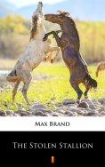 eBook: The Stolen Stallion