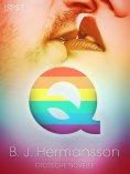 eBook: Q - Erotische Novelle