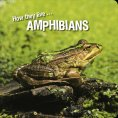 eBook: How they live... Amphibians